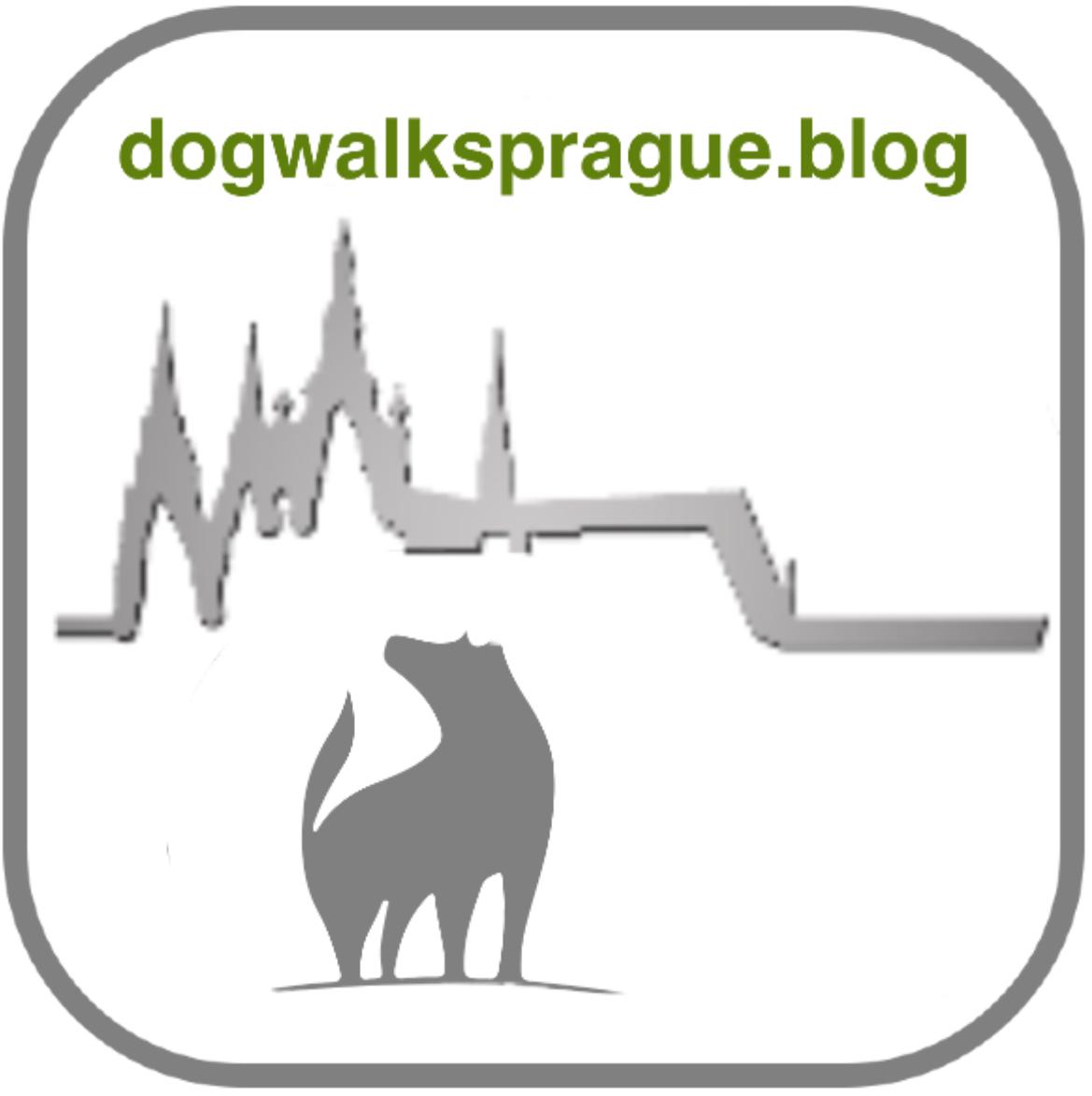 Dog Walks Prague
