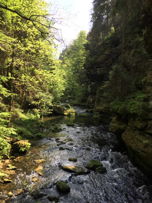Gorges, from Mezní Louka yellow trail.