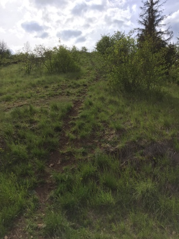 Unmarked path